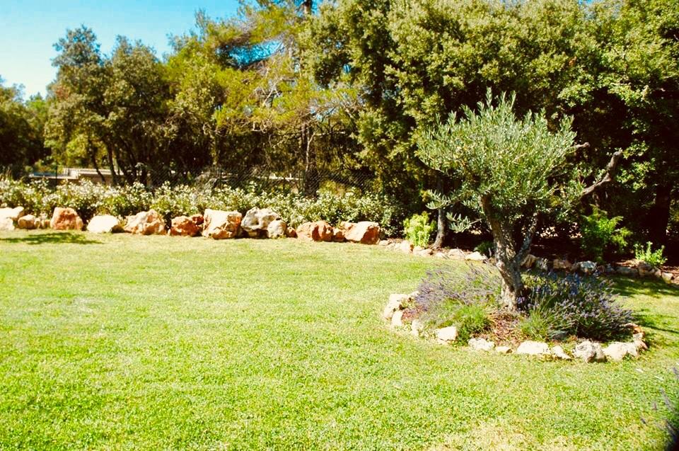 Jardin et Vasques fleuris
